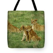 The Four Musketeers Tote Bag