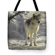 The Gray Wolf Tote Bag