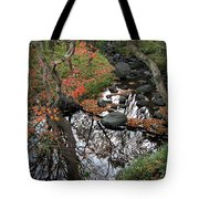 The Heart Of The Forest Tote Bag