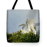 The Light From Above Tote Bag
