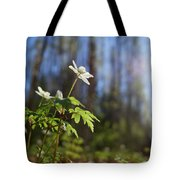 The Morning. Wood Anemone Tote Bag
