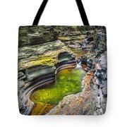The Narrows Of Watkins Glen Tote Bag