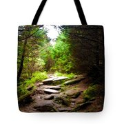 The Path To Righteousness Tote Bag