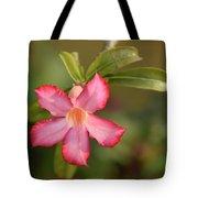 The Pink Wonder Tote Bag