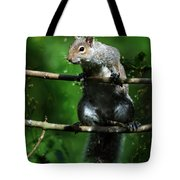 The Squirrel From Fairyland Tote Bag