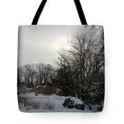 The Storm Is Gone Tote Bag