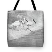The Tide Of The Ibises Tote Bag
