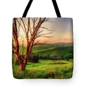 The Valley  Ed1 Tote Bag