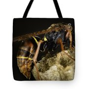 The Wasp Tote Bag