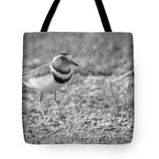 Three Banded Plover Tote Bag