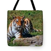 Tiger II Tote Bag