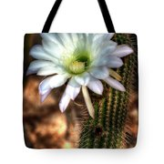 Torch Cactus - Echinopsis Candicans Tote Bag