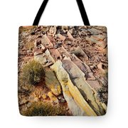 Tracks Of Color In Valley Of Fire Tote Bag