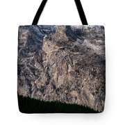 Teton Tree Line  Tote Bag