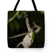 Tree Snake Eating Gecko Tote Bag