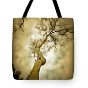 Tree Top In The Clouds Tote Bag