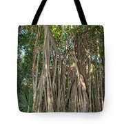 Trees With Aerial Roots At The Coba Ruins  Tote Bag