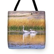 Tranquil Trumpeter Swans Tote Bag