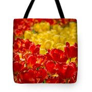 Tulips At Ottawa Tulips Festival Tote Bag