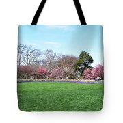 Tulips In The Park. Tote Bag