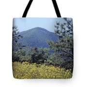 143419-turk Mountain Overlook  Tote Bag