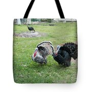 Turkeys In The Yard At Laguna Guerrero Tote Bag