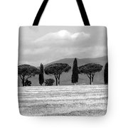 Tuscany Trees Tote Bag by Julian Perry
