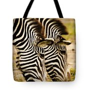 Twins In Stripes Tote Bag