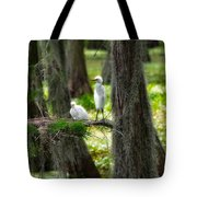 Two Baby Great Egrets And Nest Tote Bag
