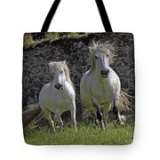 Two Highland Ponies. Tote Bag
