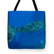 Two Humpback Whales Tote Bag