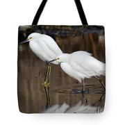 Two Snowy Egrets Tote Bag