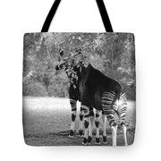 Two Stripers Tote Bag