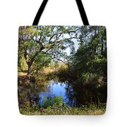 Typically Tidal Tote Bag