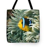 Underwater Close-up Tote Bag