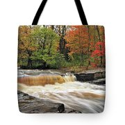 Unnamed Falls Tote Bag