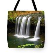 Upper Butte Creek Falls In Autumn Tote Bag