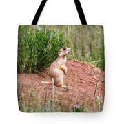 Utah Prairie Dog Tote Bag
