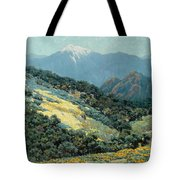 Valley Splendor Tote Bag