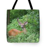 Velvet Buck Tote Bag
