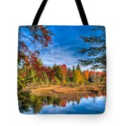View From The Lock And Dam Trail Tote Bag