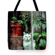 Village Cat Tote Bag