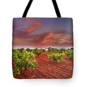 Vineyards At Sunset Tote Bag