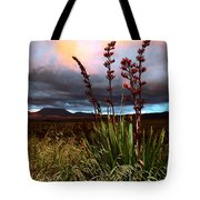 Volcanic Plateau Sunset Tote Bag