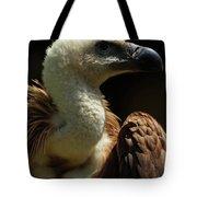 Vulture. Gyps Fulvus Tote Bag