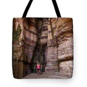Wadi Zered, Western Jordan. Tote Bag