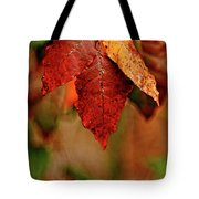 Waiting For Fall Tote Bag