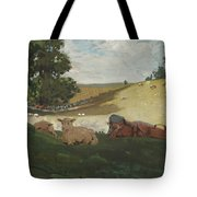 Warm Afternoon Tote Bag