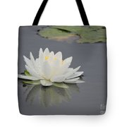 Water Lily Collection Tote Bag