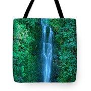 Waterfall Close-up Tote Bag